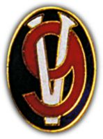 95TH DIV HAT PIN