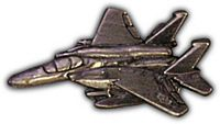 F-15 HAT PIN - HATNPATCH