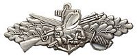 SEABEES COMBAT SERVICE LARGE HAT PIN - HATNPATCH