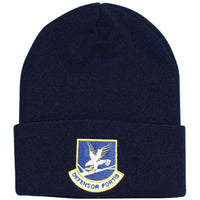 Defensor Fortis Direct Embroidered Blue Watch Cap - HATNPATCH