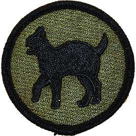 81st Regional Readiness Command OD Subd Army Patch - HATNPATCH