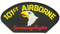 101ST ABN DIV PATCH