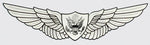 U.S. Army Aircrew Wings Decal