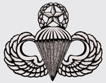 Para Wing Master Decal - HATNPATCH