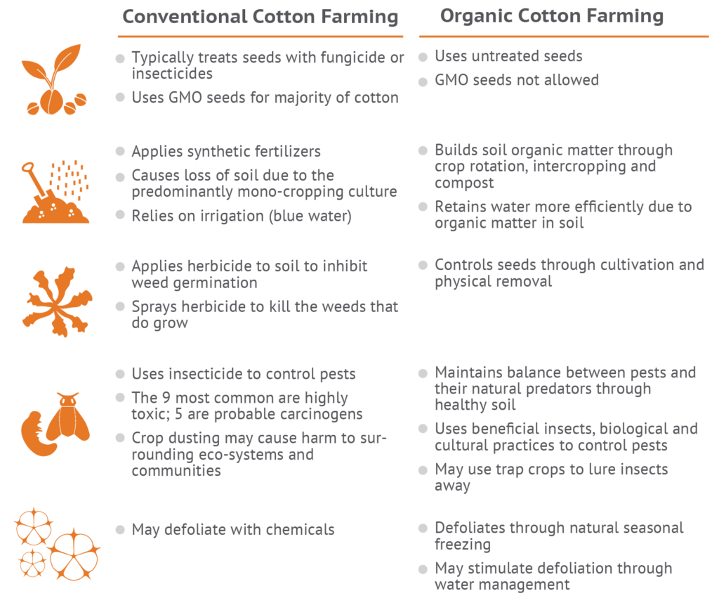 differences between organic cotton and conventional cotton farming