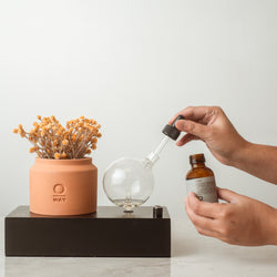 Oway SEGNO Nebulizing Essential Oil Diffuser  [SAVE 15%!]
