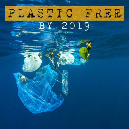 Plastic Free by 2019 - Parkminster