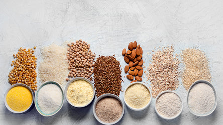 Plant Protein Versus Animal Protein, You Decide