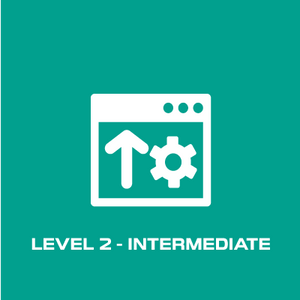 Intermediate Level