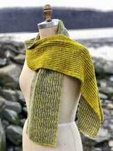 Load image into Gallery viewer, Cabriolet | The Scarf