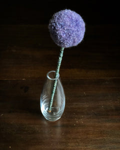 An Allium | Prints