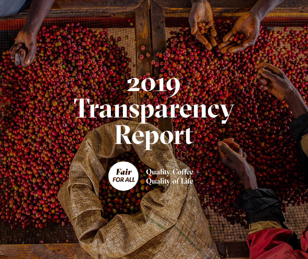 Transparency Report 2019