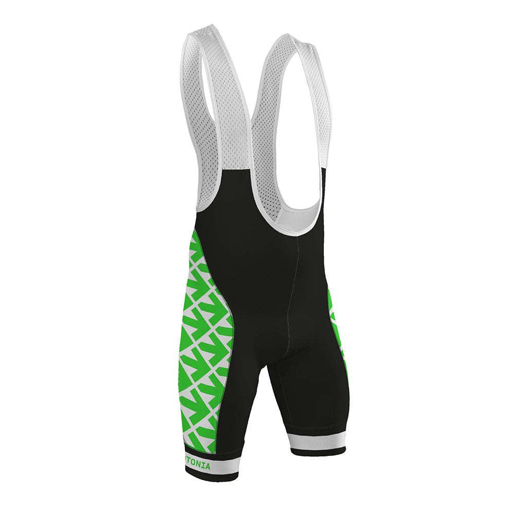2021 Evergreen Bibshorts