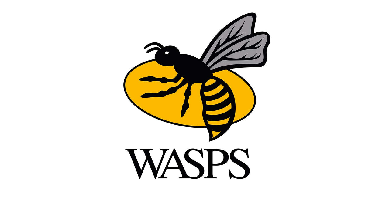 History of Wasps
