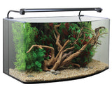 AquaNano Bow-fronted aquarium 80B