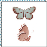 BUTTERFLIES (Pack de 2)