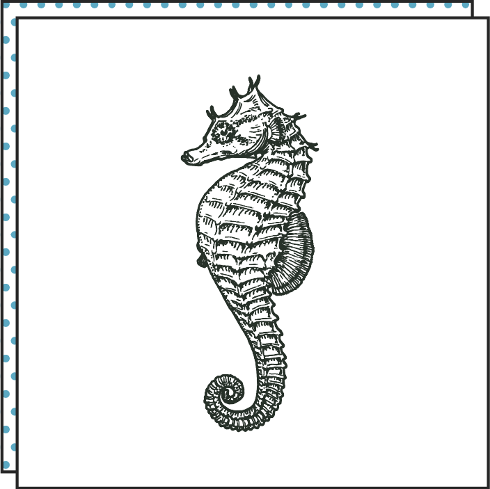 Tattoonie Temporary Tattoos seahorse