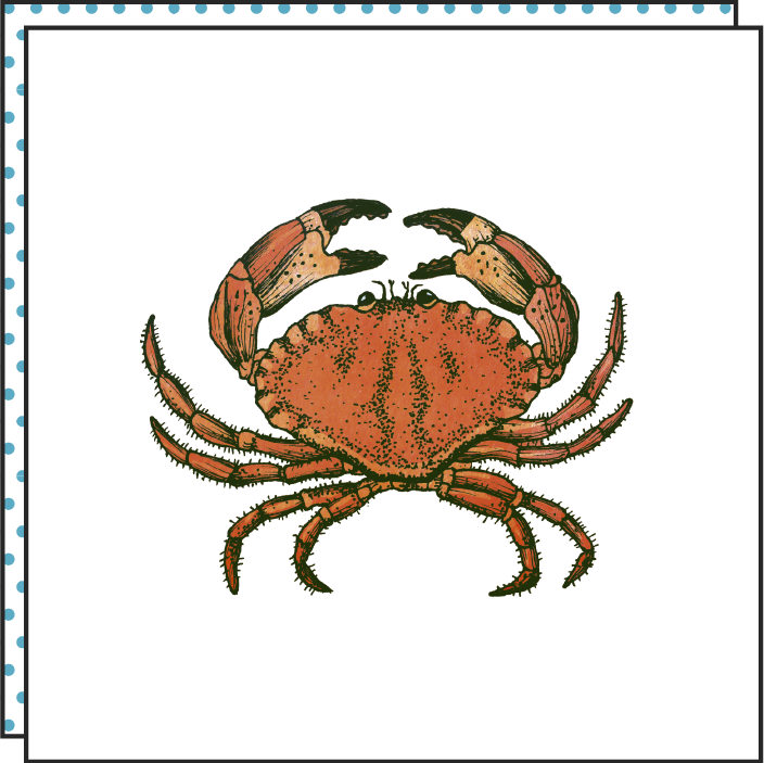 tattoonie temporary tattoos crab