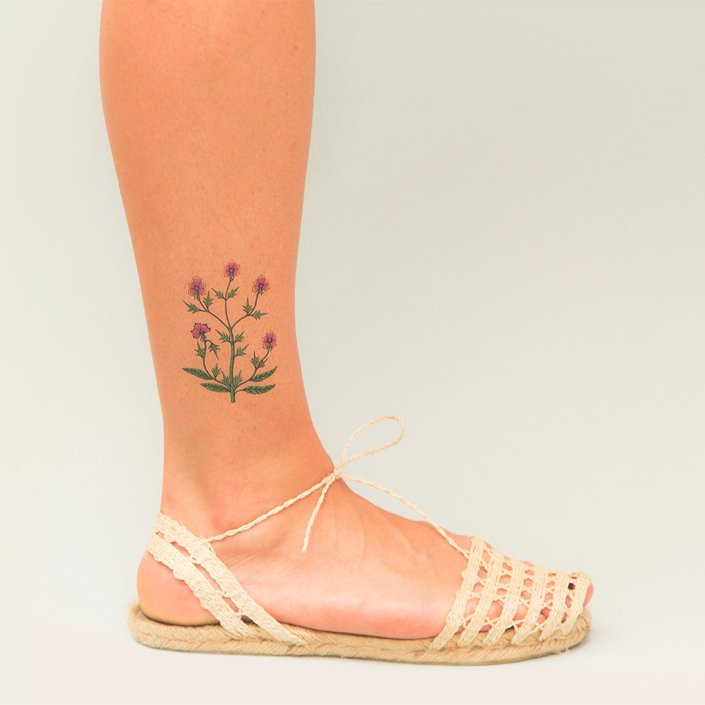 Tattoonie Temporary Tattoos voynich plant flowers