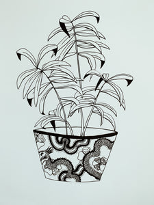 Dragon Pot Plant - Botany Lane Print by Kate Durham