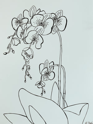 An Orchid - Botany Lane Prints by Kate Durham