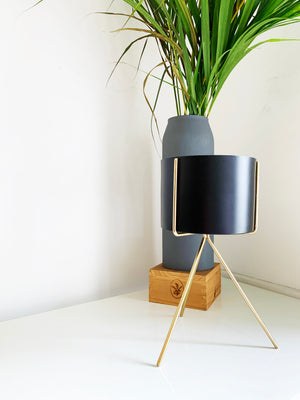 Black and Gold Cylinder Planter by Shiva Designs Bespoke