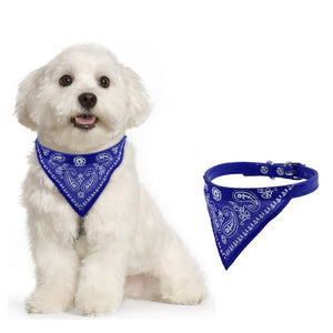 Bandana collar -  adjustable