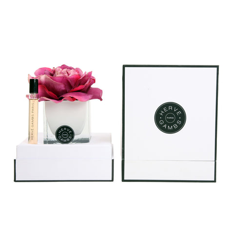 Herve Gambs Rose Gift Set Fuchsia