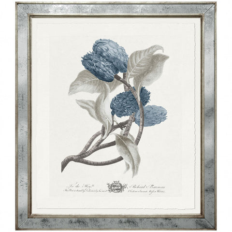 Imperial Flowers Blue & Grey- Print 6