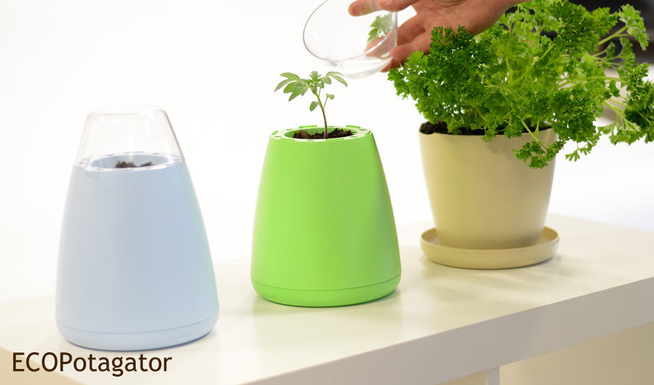 Group of three ECO Potagators, blue, beige and green. In propagation, seedling growth and plant growth stages.