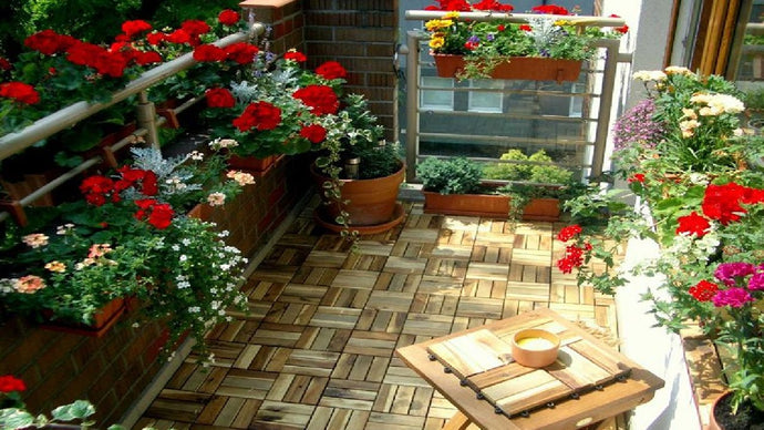 The 3 Main Steps To Create A Vegetable Garden On Your Balcony