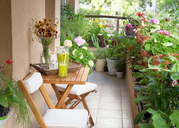 Garden On The Balcony