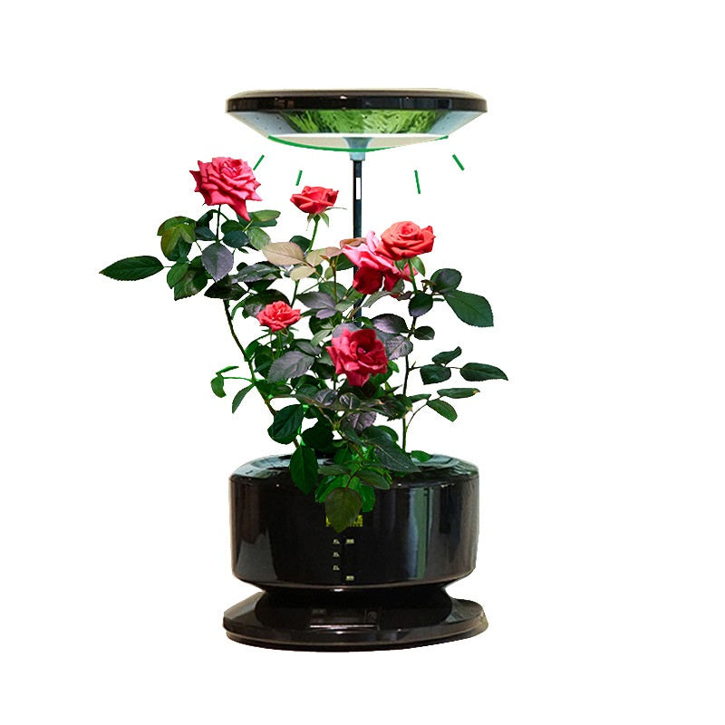 Donatello Self-Contained Hydroponics Plant Pot