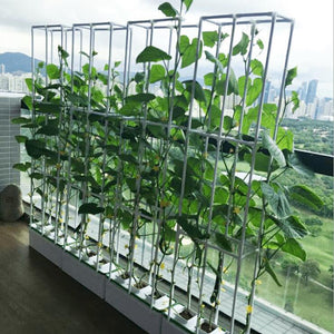 Smart Wire-Frame Hydroponics Garden - Herboponics - Cutting Edge Hydroponics Setup For Everyone