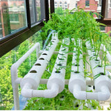 Hydroponic Grow Kit 54 Sites