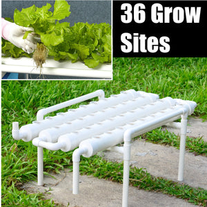 Hydroponic Grow Kit 36 Sites