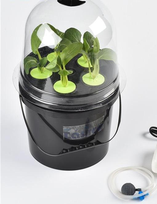 Hydroponics Portable Cup 5 Sites