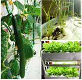 Smart Hydroponics Garden - Movable Wall - Herboponics - Cutting Edge Hydroponics Setup For Everyone