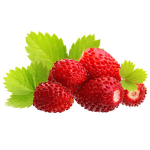 Grow Wild Strawberry Plants