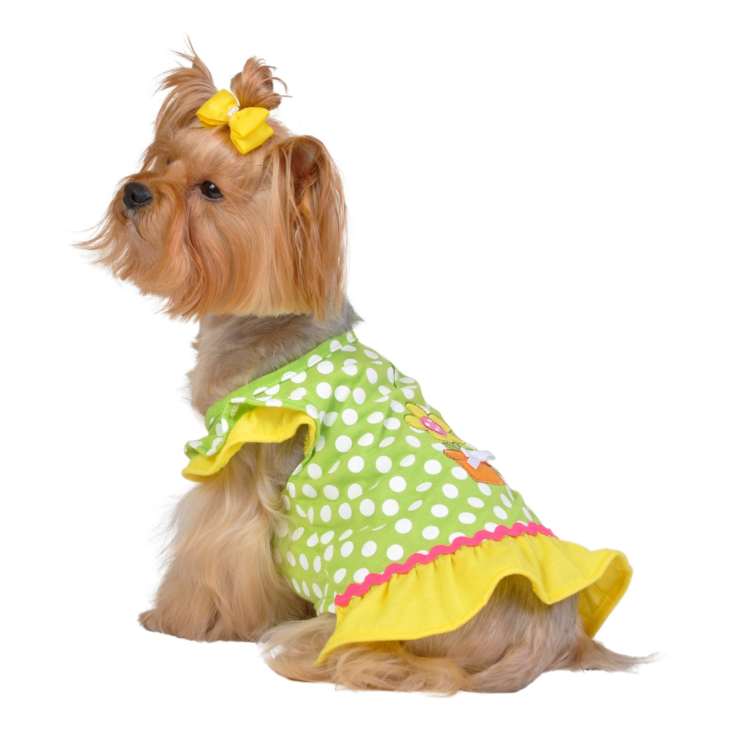 Lime Dot Daisy Dress