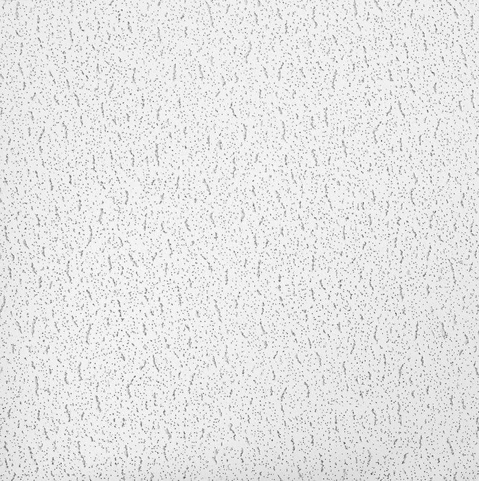 Armstrong Textured Look Ceiling Tile Ceiling Steel & Wire Northeast