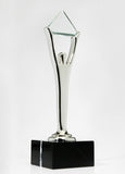 Silver Stevie Award Trophy