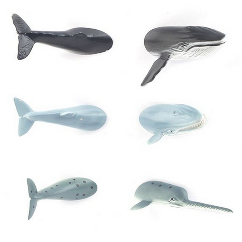 Kikkerland Whale Butt Magnets