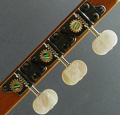 Individual with Mother of Pearl Knob and Abalone Dot