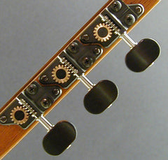 Individual with Ebony Knob and Ebony Dot