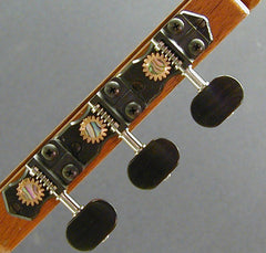 Traditional Black with Ebony Knob and Abalone Dot