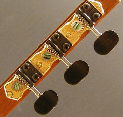 Traditional Gold with Ebony Knob and Abalone Dot