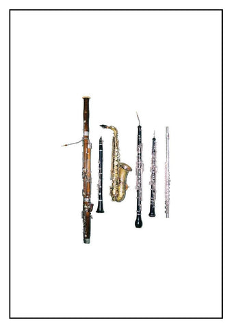 Woodwind Mixed Trio