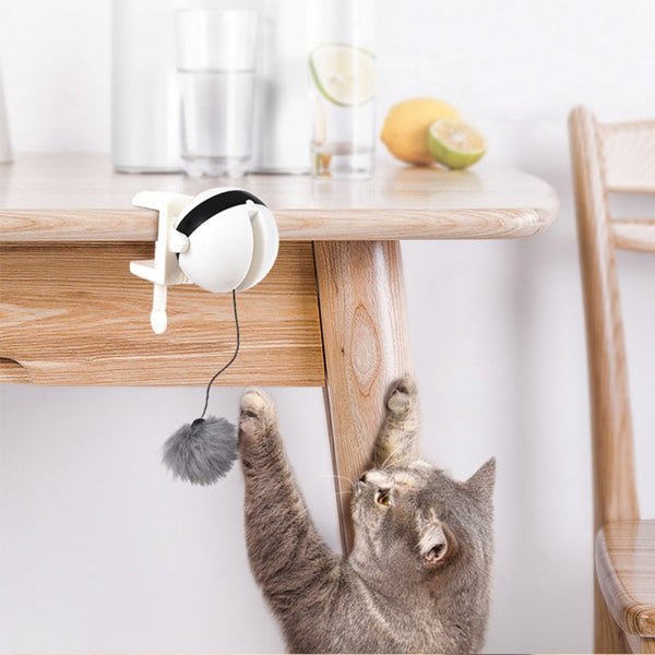 Interactive Lifting Ball Cat Toy Teaser - easeable.com