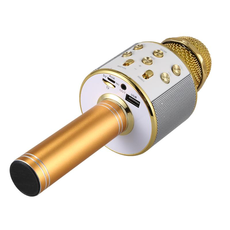 Professional Wireless Bluetooth Karaoke Microphone - easeable.com